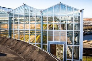 Urban Farmers rooftop greenhouse