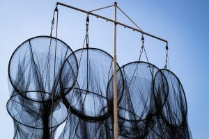 Eel fish traps