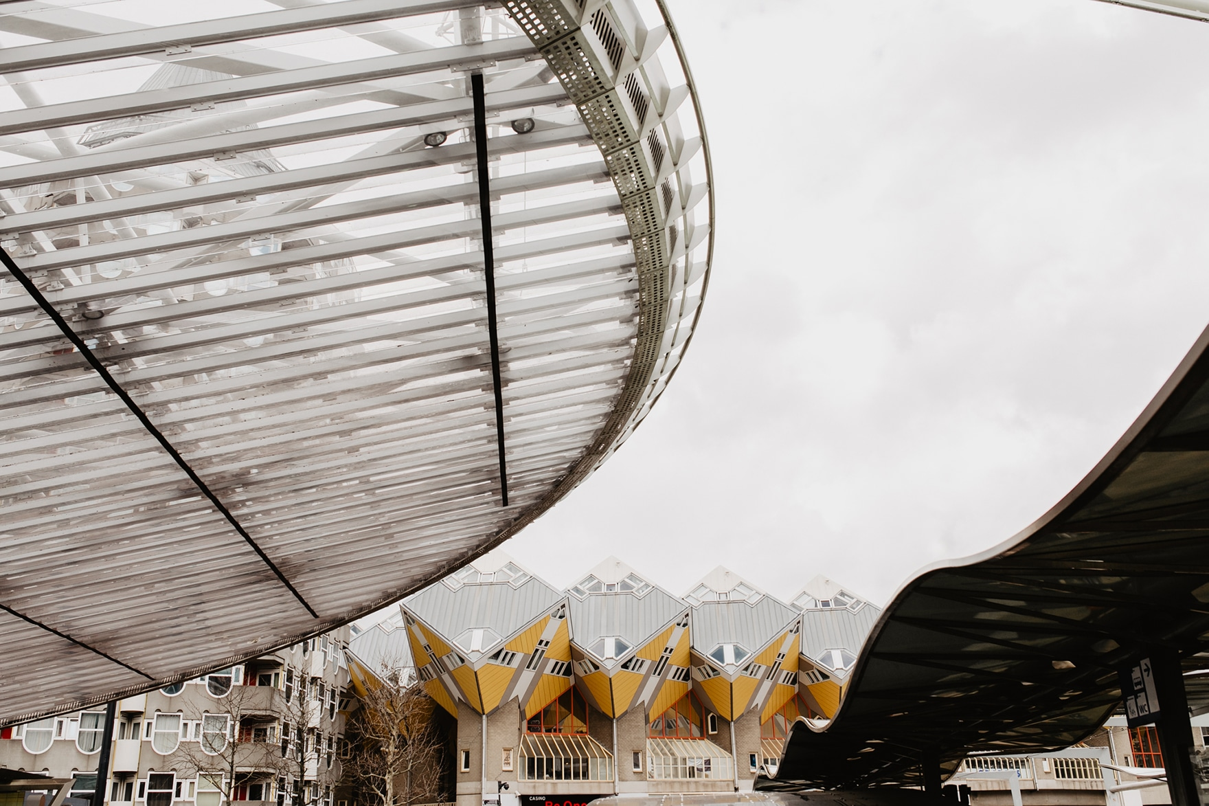 Architecture Walk and Talk in Rotterdam