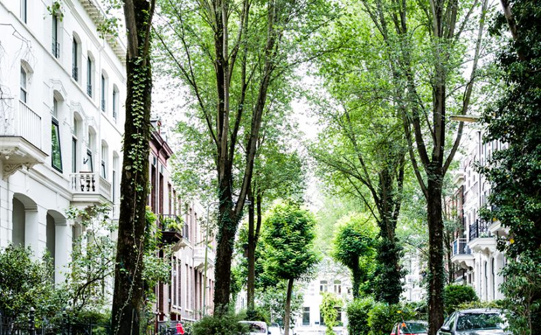Street in Spijkerkwartier