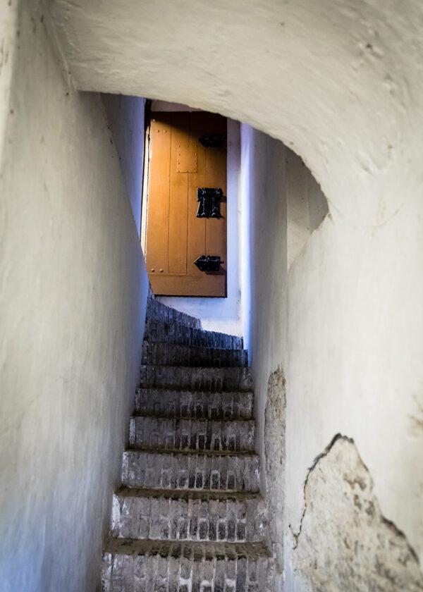 Cellar in Leiden